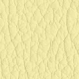 Fiore Leather